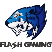 Flash Gaming