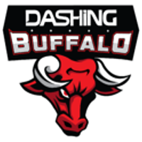 Dashing Buffalo